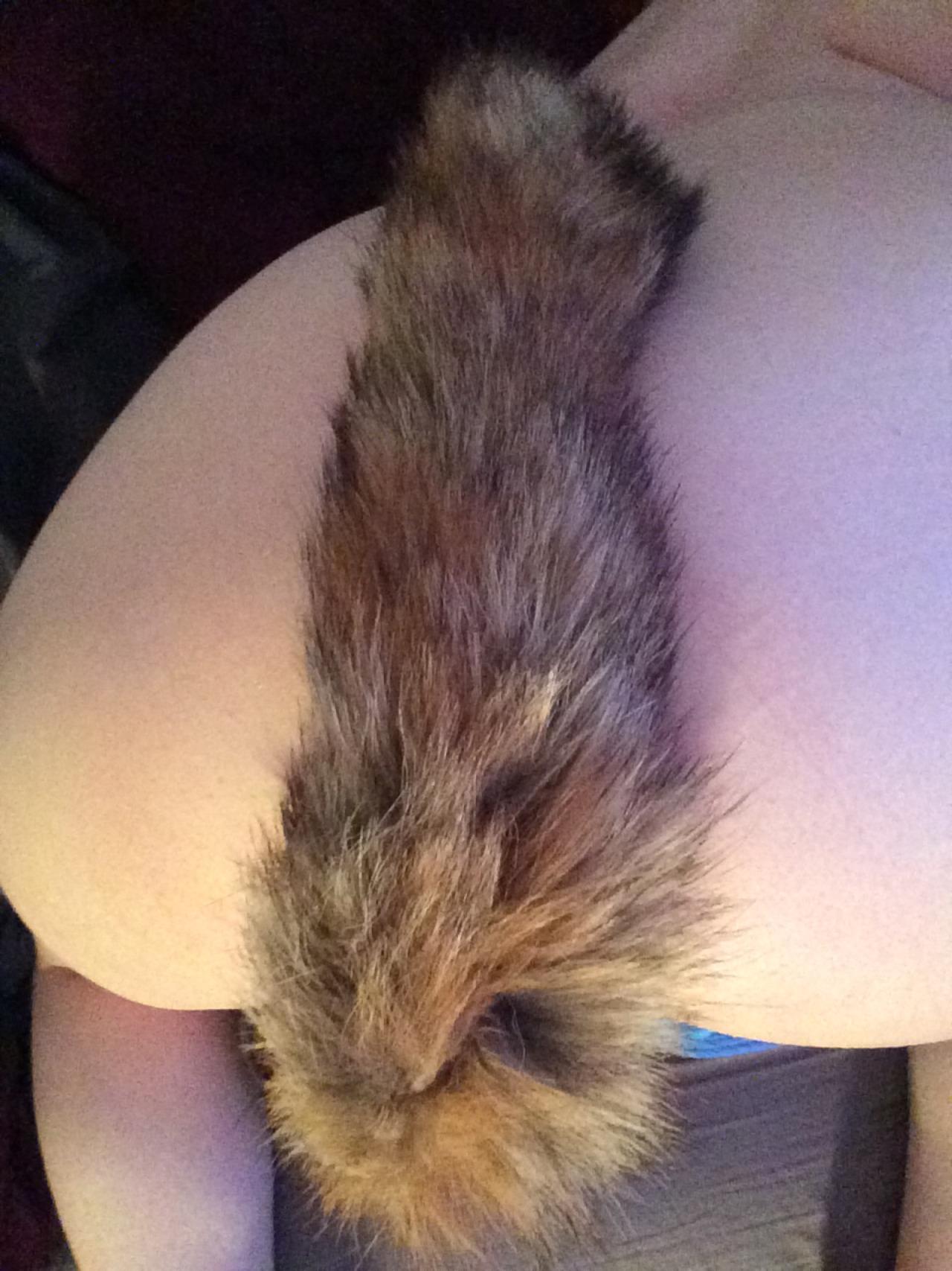 【尻尾エロ画像】ペットになり切るためにお尻を…アナルで尻尾装着したお姉さん(*´Д`)
