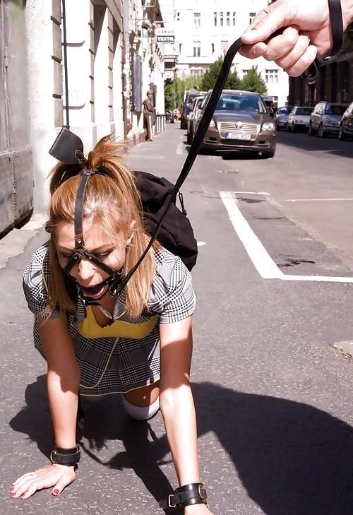 【調教エロ画像】緊縛よりも扱いは悲惨…人ではなくペット扱いな首輪装着女たち(;´Д`)