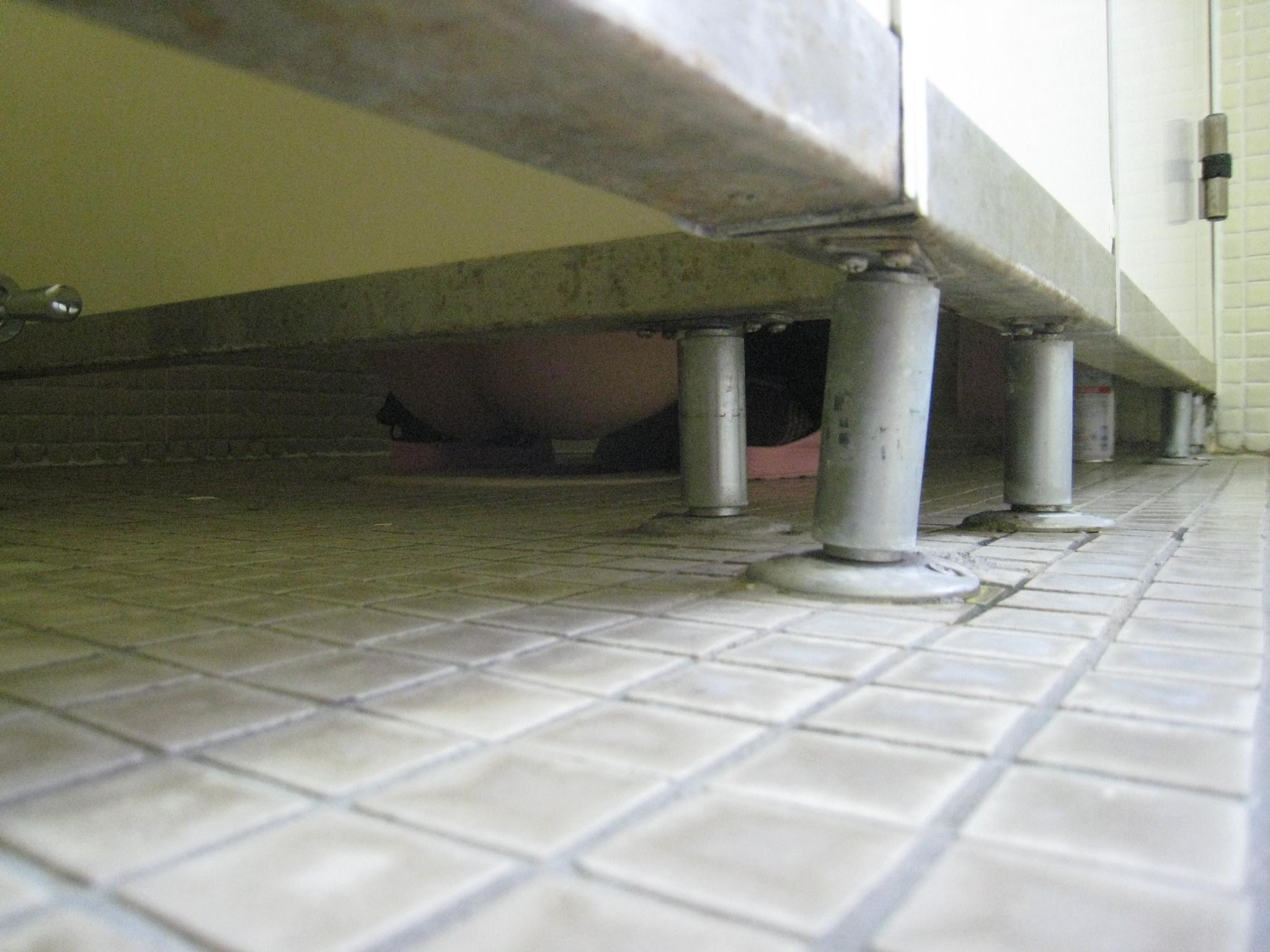 【トイレエロ画像】和式便器に跨ってシャー…シュールな女子トイレの図(;´∀`)