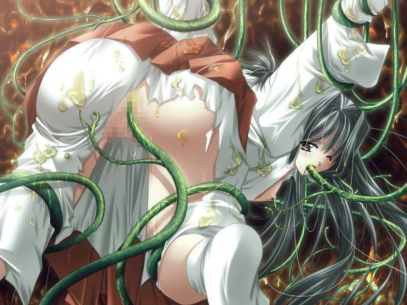 【二次エロ画像】異形の触手がもたらすイカセ地獄に陥落していく美少女たち!(゚A゚;)