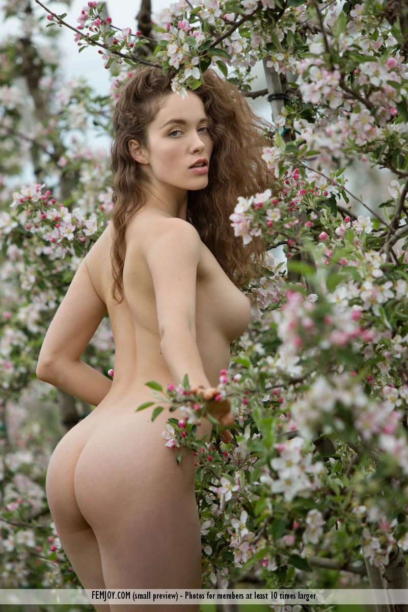【海外エロ画像】乳だけ見てたら見逃す…最上質の美尻を誇る海外美女たち!