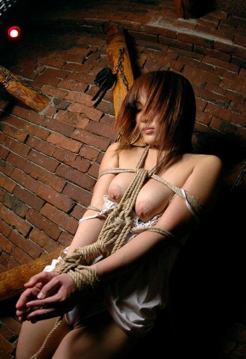 【SM緊縛エロ画像】自由を奪われた女にしたい放題が好きなやつよって来い! 13
